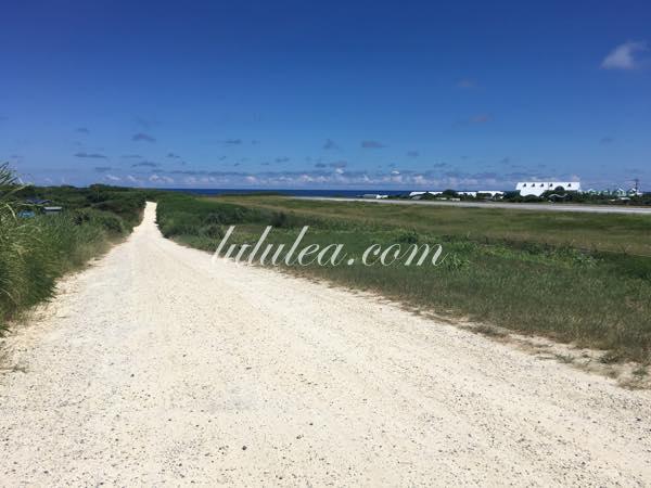 空港脇の白い道