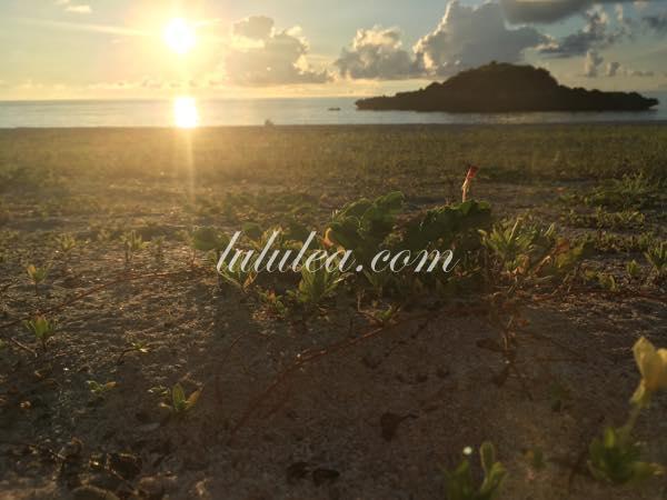 与論島の朝日